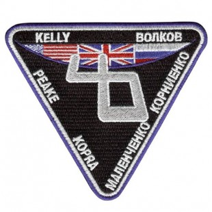 Expedition 46 mission patch
