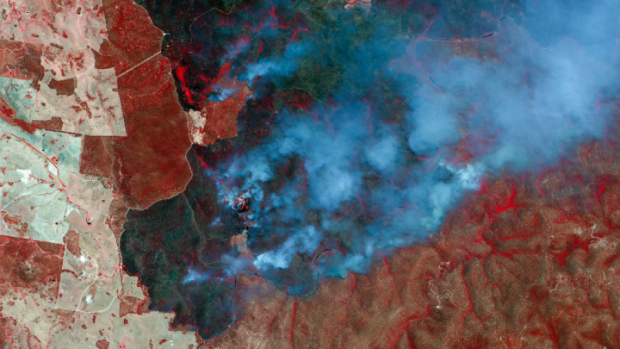 Satellite mage showing Fires and burn scars, NSW, Australia, Charter Call 726