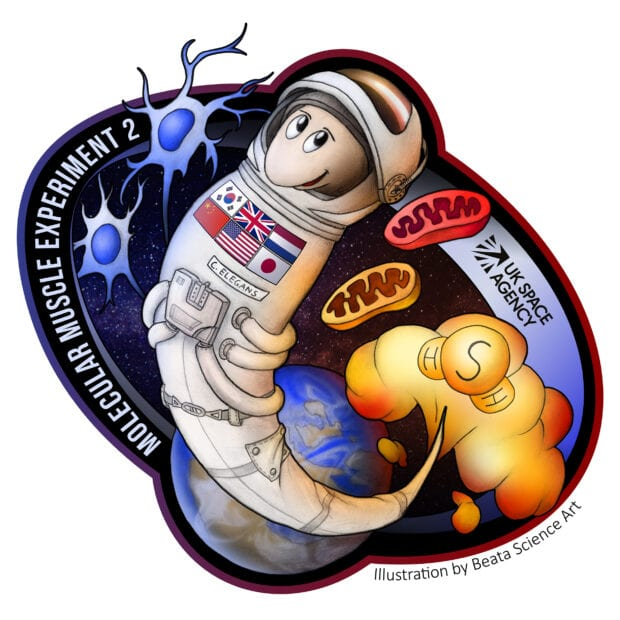 MME 2 logo